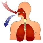 Esercizi di respirazione